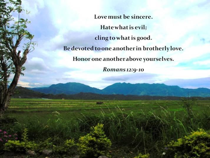 Andrew 19 Deuteronomy 30:11-14 November 30 or 19:1-6
